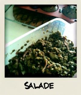 salade-lentilles-cumin